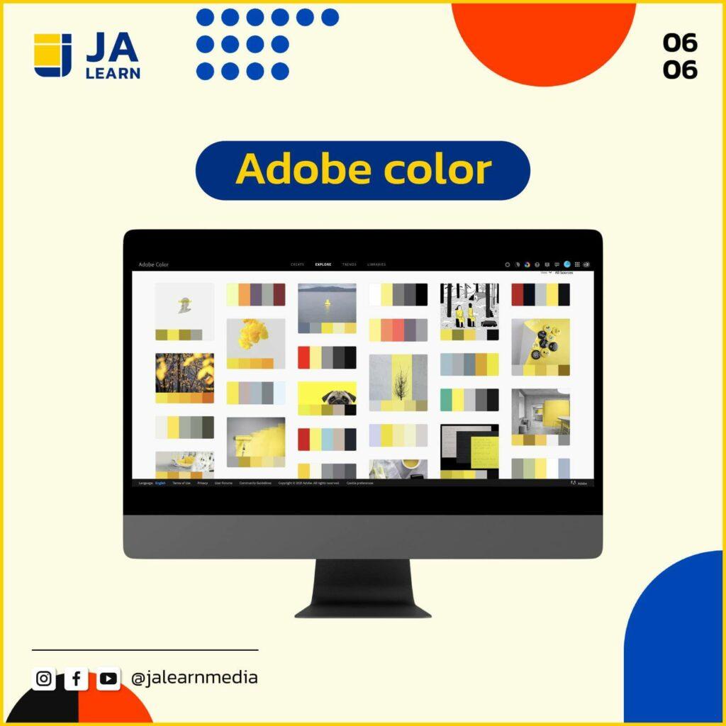 website_color_6